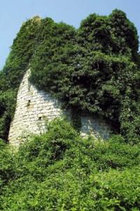 Vestiges tour de la Grange